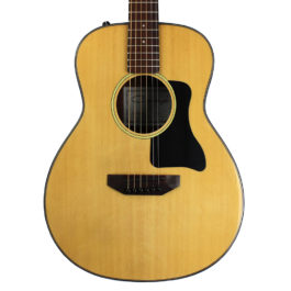 Caraya V Travel Acoustic Electric Guitar With Bag
