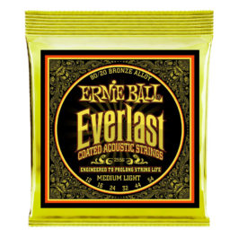 Ernie Ball STRINGS  EVERLAST 80/20  ACOUSTIC MED-LIGHT 12-54