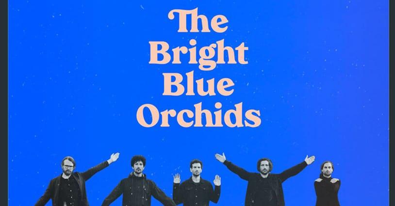 The Plastics Release A New Album 'The Bright Blue Orchids'