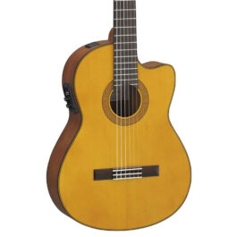 YAMAHA CGX122MSC Spruce Top Classical Guitar with Pickup
