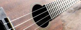Ukulele & Folk Strings
